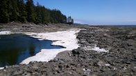 Around the 67 km mark, beach trail, West Coast Trail