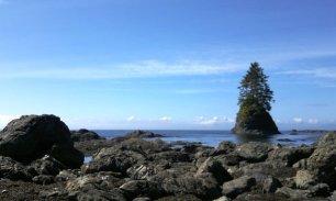 Kellet Rock II, West Coast Trail - KM 67